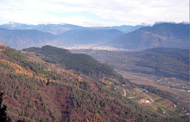 panorama650