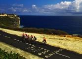 cyclists3_650