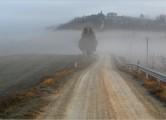 strade12-fog650