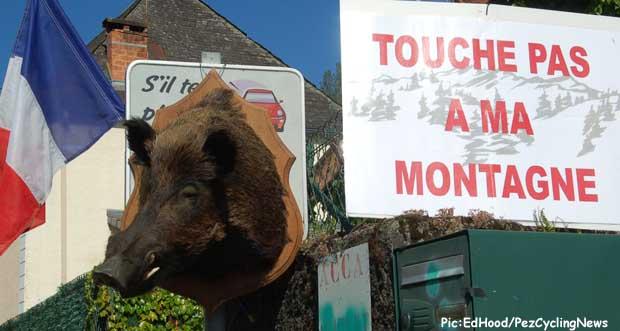 tdf2014st16-boar
