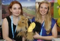 girls_yorkshire-terrier