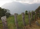 somano14-fence650