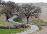 strade15pre-7curve650