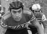 Archive wielrennen zw/wit