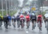 Gent - Wevelgem  WT 2015