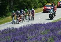 Tour de France 2013 stage-15