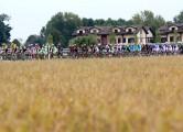 torino15-field-peloton-1500
