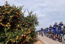 Cycling: Team Etixx Quick-Step 2016
