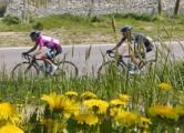 Giro del Trentino 2015 - stage-4