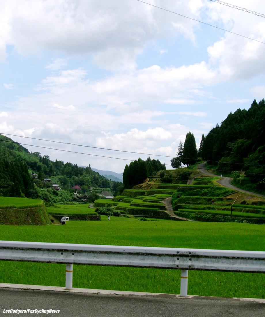 lowdown-japan16-rice1-920