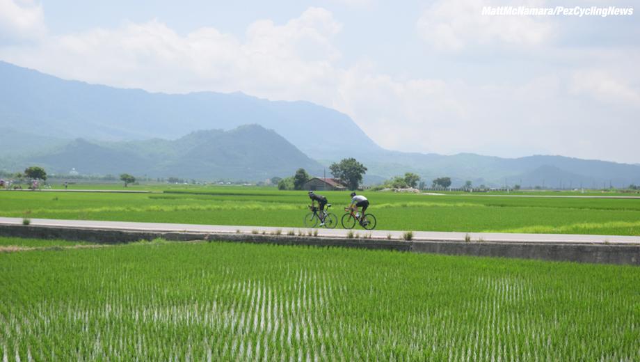 formosa16mm-rice2-920