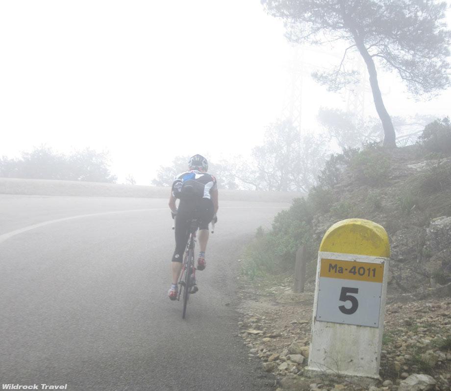 wildrock16-mallorca-mist