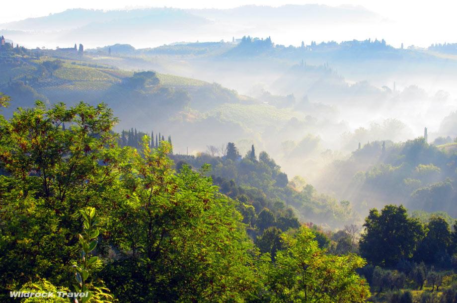 wildrock16-tuscany-mist