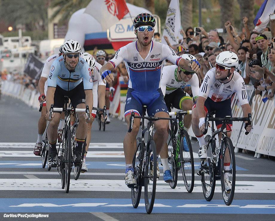 Doha - Qatar - wielrennen - cycling - radsport - cyclisme - Sagan Peter (Slowakia / Team Tinkoff - Tinkov) - Cavendish Mark (GBR / Team Dimension Data) -Boonen Tom (Belgium / Team Etixx - Quick Step) pictured during the Road Race men of the UCI Road World Championships 2016 in Qatar - photo Anton Vos/Cor Vos © 2016