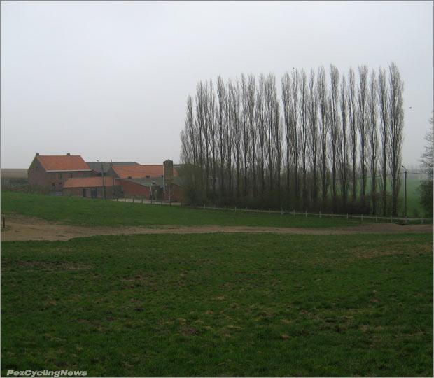 rvv12rp-37trees620
