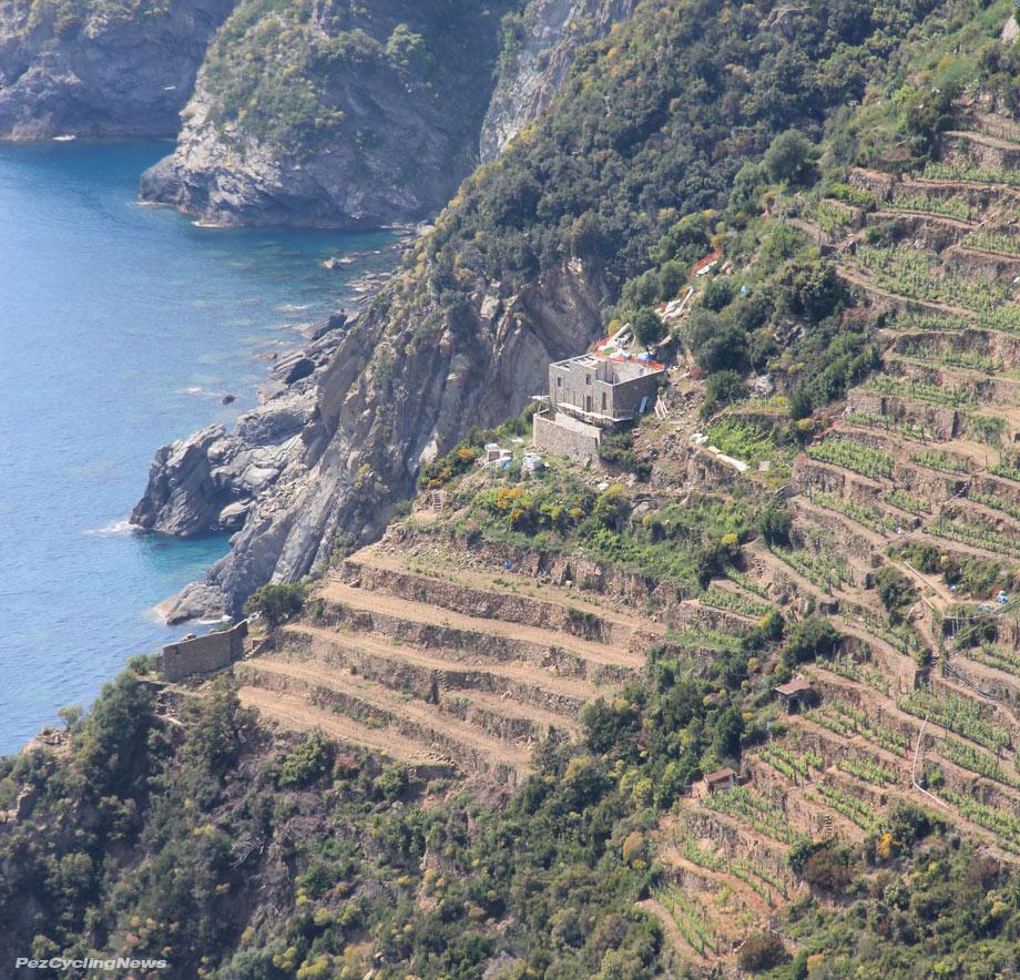 negroni15-terrace