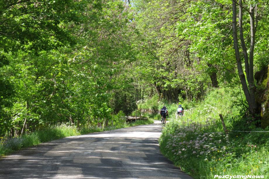 veloclassic16-croisderfer-forest