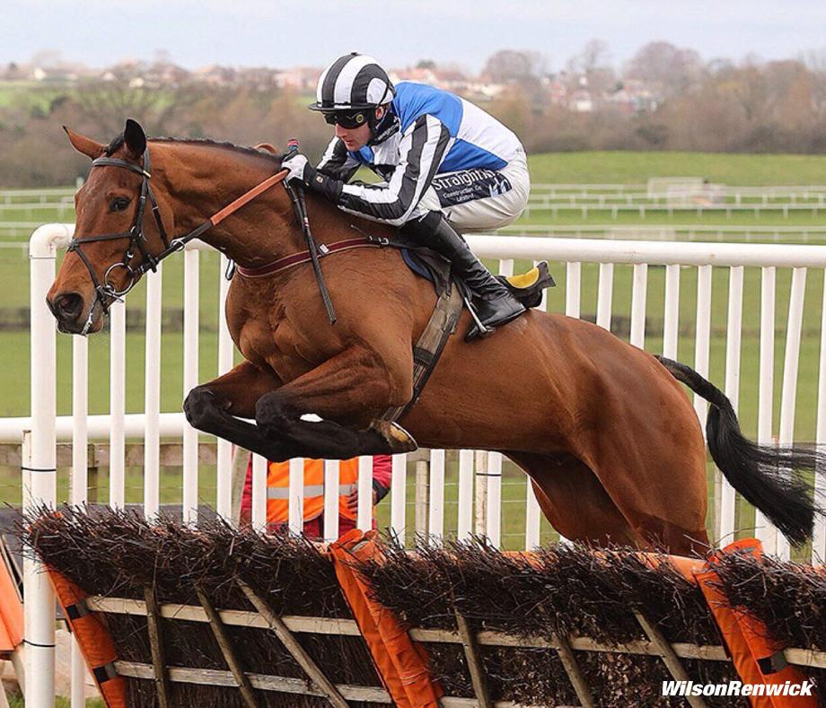 wilson-renwick-horse-920