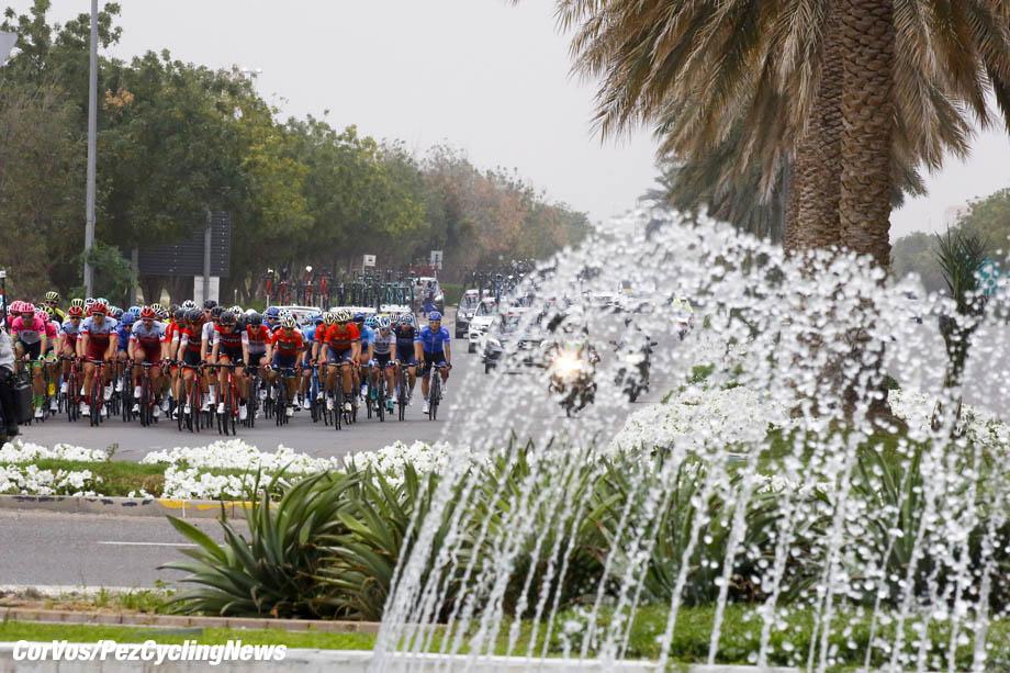 Jebel Hafeet - Abu Dhabi - wielrennen - cycling - cyclisme - radsport - illustration - scenery - carte postal scenic shot - postcard sfeerfoto - sfeer - illustratie  pictured during the 2018 Abu Dhabi Tour stage 5 from Qasr Al Muwaiji to Jebel Hafeet (199KM) - photo LB/RB/Cor Vos © 2018
