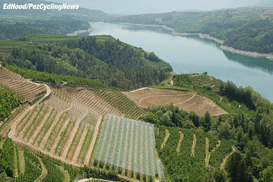 giro08rested vineyards 920