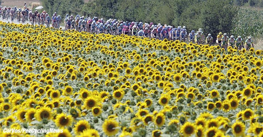 Carcassone- Frankrijk - wielrennen - cycling - cyclisme - Tour de France - 12e etappe Luchon-Carcassone - sfeer illustratie - foto Marketa Navratilova/Cor Vos ©2006