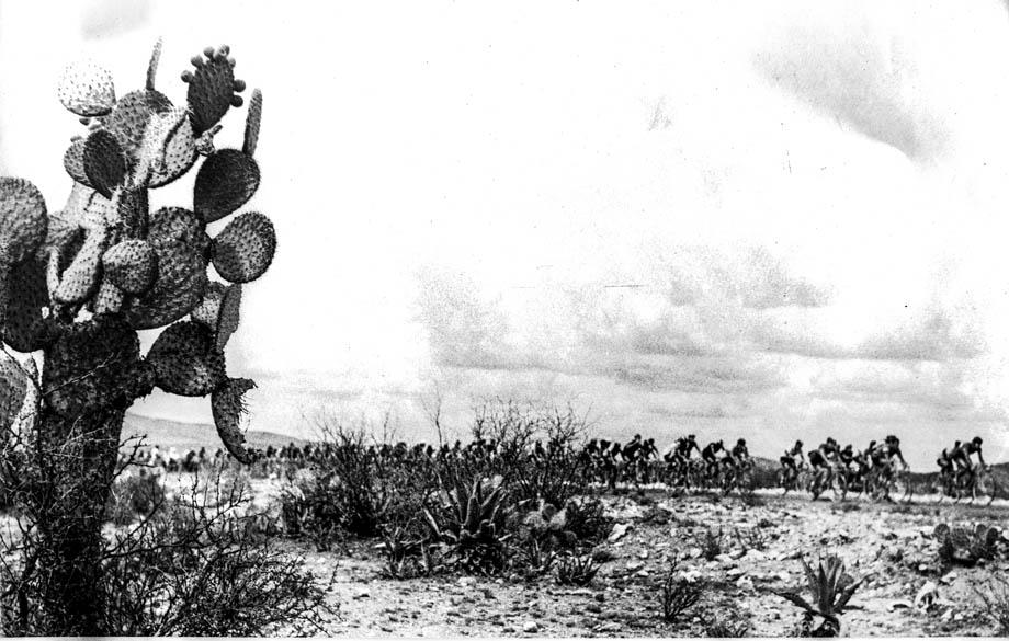 big climb58 cactus 920
