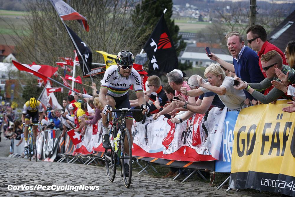 Flanders Sagan